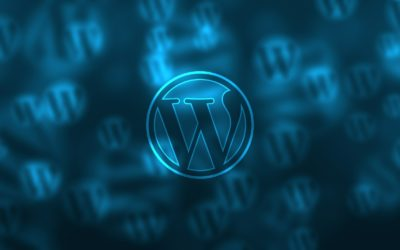 Newest Version for WordPress Update Breaks Future Auto-Updates. Manually Update Now!
